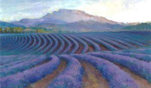 Lavender Vista